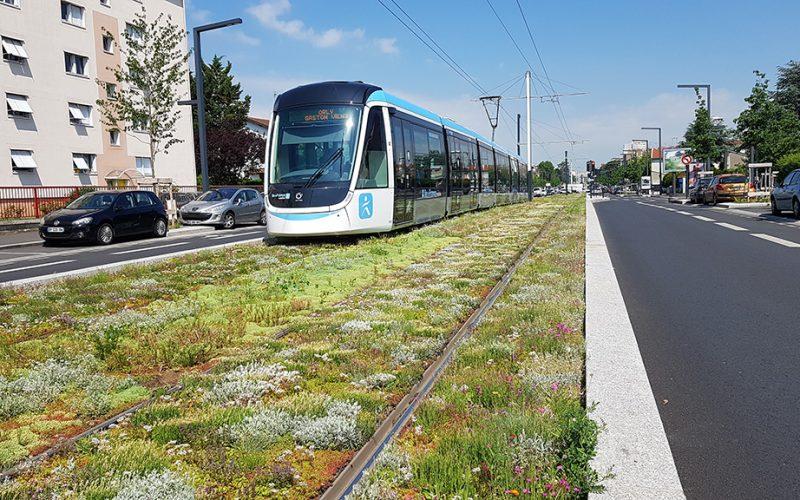 Tramway - © Ecovégétal - Ligne 9 - T3 grandparisdurable.org